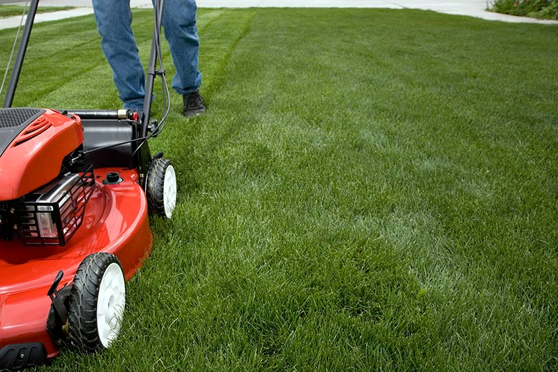 Leave grass clippings on lawn when mowing.